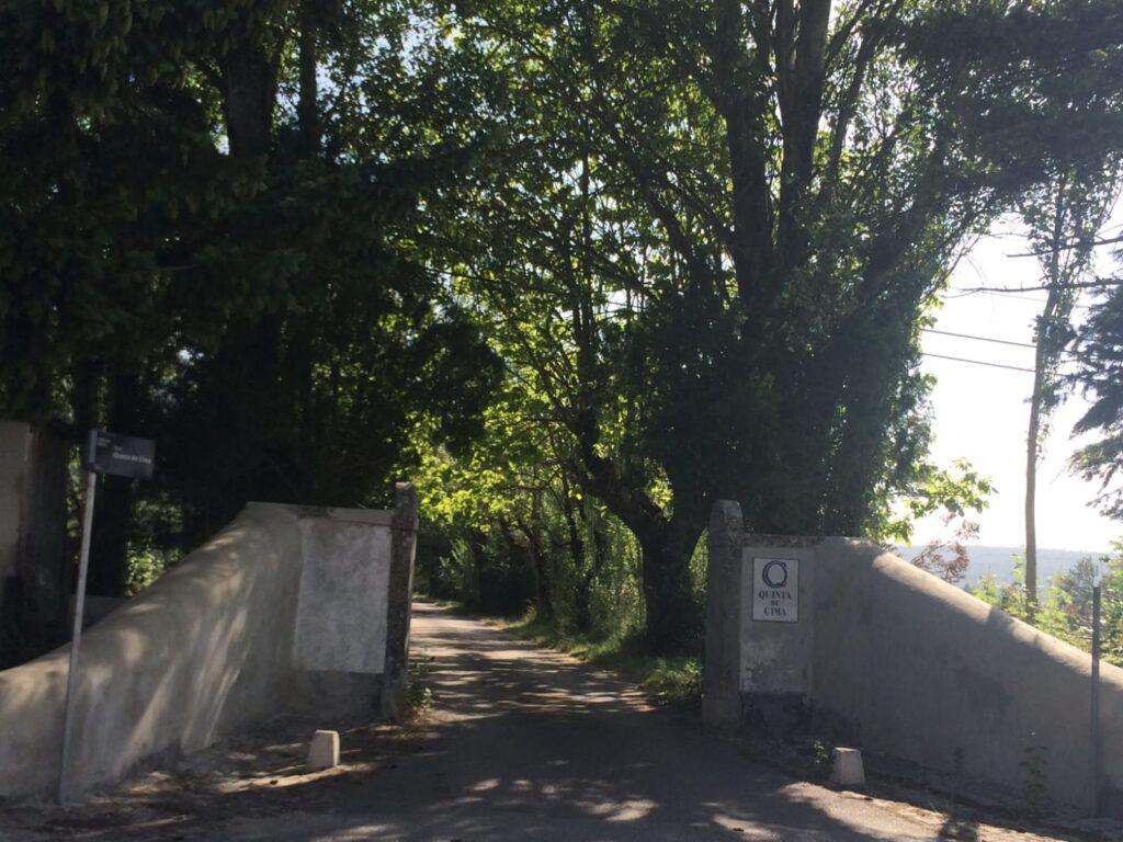 visiter-ville-de-ansiao-quinta-de-cima-rois-portugal-tourisme